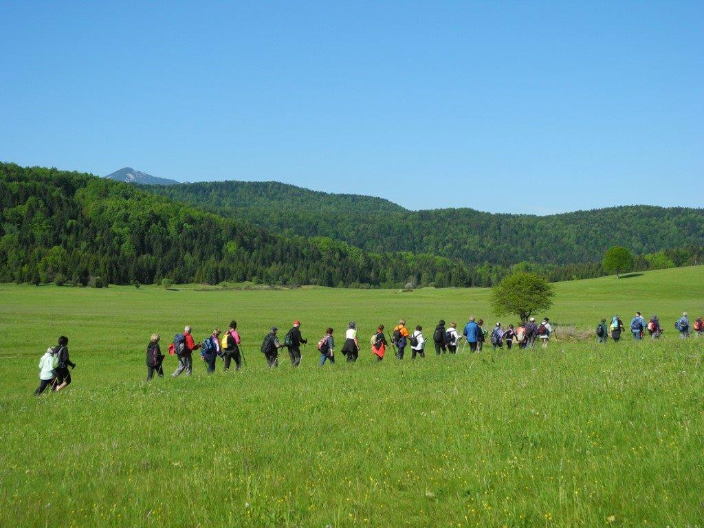 Hiking in Pivka